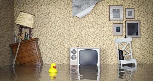 Помощь при заливе квартиры - Услуги от юридической компании «Конгломерат»